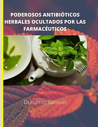 PODEROSOS ANTIBIÓTICOS HERBALES OCULTADOS POR LAS FARMACÉUTICOS: Use estos antibióticos herbales para cualquier dolencia