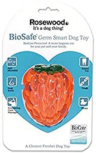 Rosewood Jouet pour Chien Framboise Biosafe Antimicrobien