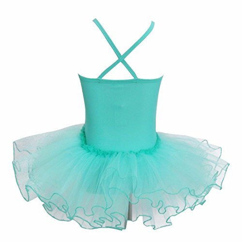 iiniim Girls' Tutu Ballet Dance Dress Dancewear Leotard Gymnastics Clothing Turquoise 2-3 Years