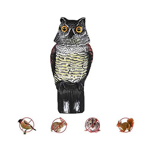Ruimada Vogelköder – Abschreckend für Vögel, Gruselvogel, Eule, umschüttelt den Kopf für die Augen, realistisch, kontrolliert von Vogel und Eule, wasserfest