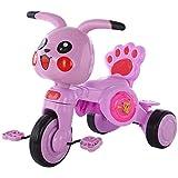 HengYue Triciclos De Triciclo para Niños De Dibujos Animados Scooter Liviano...