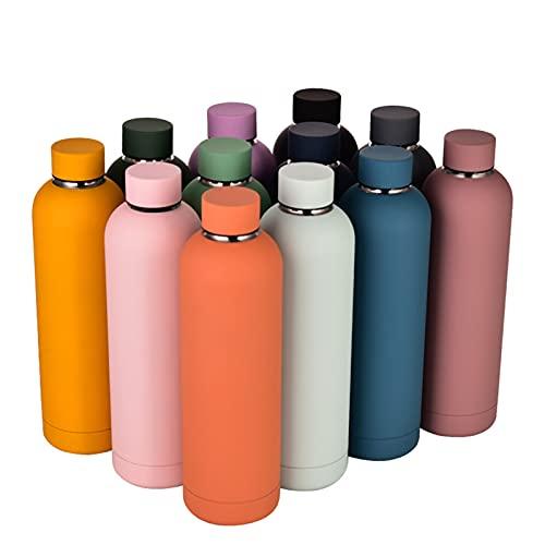 ZSRGVF - Borraccia in acciaio inox, 750 ml, doppia parete, isolata sottovuoto, in metallo, senza BPA, per sport freddi, per palestra, casa, ufficio, all'aperto, lavoro, colore: arancione cinnabar