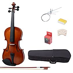 The First Thing Thatll Catch Your Eye When You See This Product Is Appearance IMusic Violin A 1 16 Matte Satin That Ideally Suited