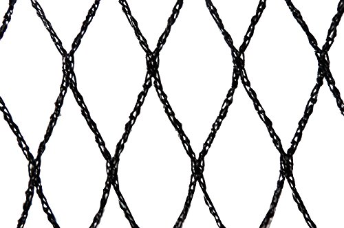 Filet anti-oiseaux - Maille de 29mm Noir 10m x 10m