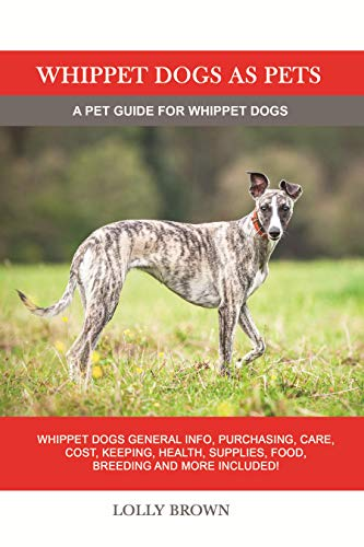 Whippet Dogs as Pets: Whippet Do...