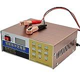 Adaskala Cargador de batería de coche 12V 24V Cargador de batería de coche eléctrico completamente automático Tipo de reparación de pulso inteligente para motocicleta
