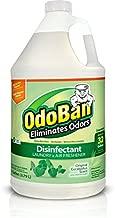 OdoBan Disinfectant Odor Eliminator, Single Clear
