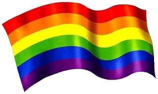 NSI - Rainbow Pride Flag - Sticker / Decal