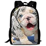 Casual Rucksack,Adjustable Pack College,Unisex Shoulder Book Bags,Large Backpack Cute Grey Shar Pei Blue Eyes Outdoor Dayback,Laptop Bag,Oxford Travel Bag,Kids Adult School Bag