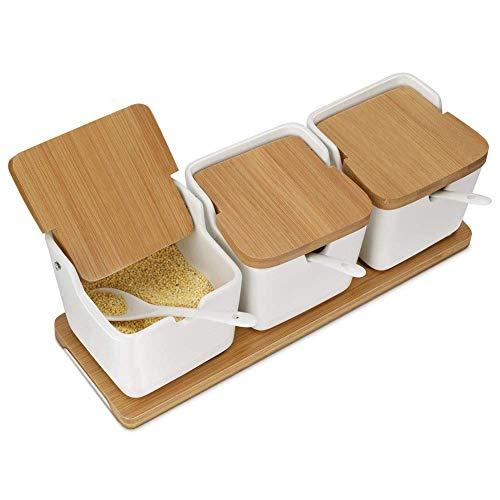 Ceramica condimento contenitori portaspezie con cucchiaio–bambù porta spezie con coperchi, zucchero contenitore e sale condimento box per casa e cucina, bianco, 250ml (242,1gram), set di 3
