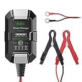 EBL Cargador de coche, 6 V/12 V, 1 Amp, multiprotección, cargador inteligente automático con pantalla LED para coche, moto, camión AGM