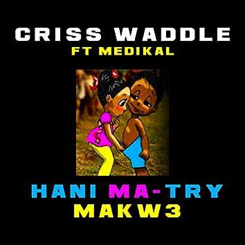 Hani Ma Try Makw3 (feat. Medikal)