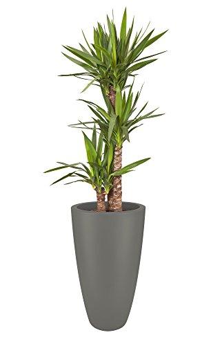 Elho plantenbak pure soft rond hoog, antraciet bloempot 40 cm steengrijs