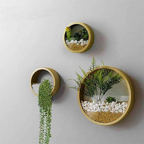 KNIKGLASS 3 Stück/Set Wandvasen Deko Übertopf für Zimmerpflanzen Sukkulenten Luftpflanzen Kakteen Kunstpflanzen und Mehr, Metall (Gold)
