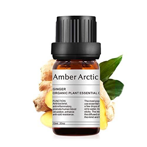AMBER ARCTIC Jengibre Aceite Esencial Para Difusor, Aceite de Jengibre 100% Puro Orgánico Fresco Para Terapia de Plantas 10Ml / 0.33Oz