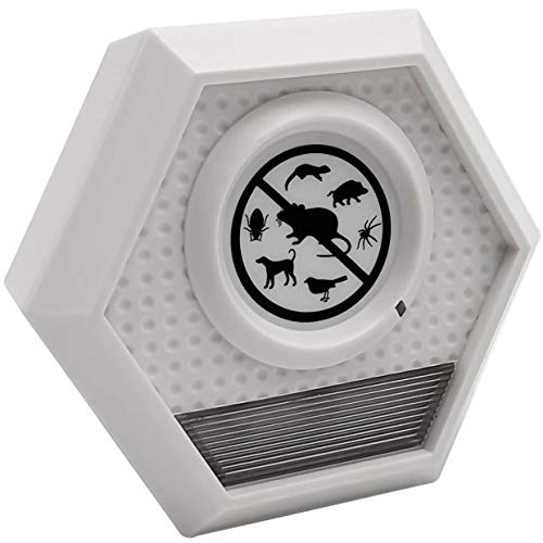 ISOTRONIC Distributore animale con ultrasuoni, repellente per animali, regolabile individualmente Flash luminoso...