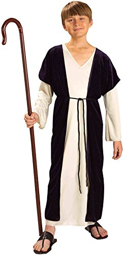 Forum NoveltiesBiblical Times Shepherd Costume, Child Medium