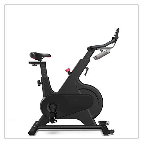 WNDRZ Bicicleta Giratoria Control Magnético Hogar Ultra Silencioso Pérdida De Peso En Interiores Equipo De Ejercicios Bicicleta Estática (Color : Black)