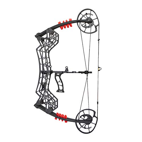 AMEYXGS Archery Compound Bow Set 30-60lbs 25' - 30' Draw Length Max Speed 310fps with Hunting Accessories Right Handed for Steel Ball Shooting and Archery