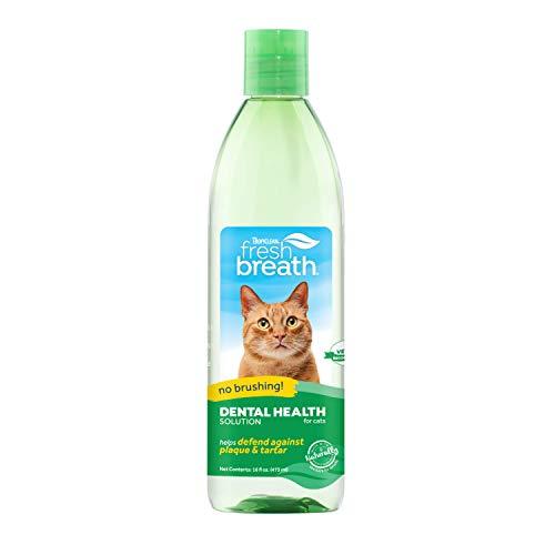 TropiClean Fresh Breath Solution de santé dentaire pour chats, 473 ml