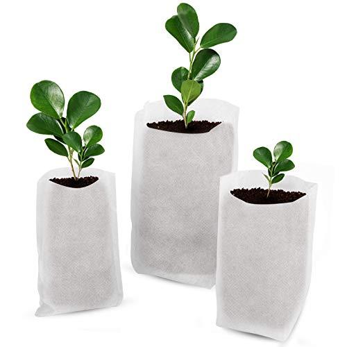 Cizen Sac de Semis Biodegradable, 300 Pièces Sacs de Pépinière Non Tissés Sacs de Plantation de Jardin Adapté Aux Légumes, Tomates, Raisins - Trois Tailles