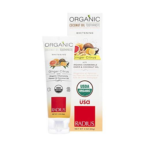 RADIUS USDA Organic Gel Toothpaste, Ginger Citrus Whitening, Non Toxic, Designed to Improve Gum Health and Reduce The Risk of Gum Disease