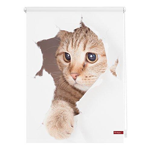 Lichtblick Verdunklungsrollo Klemmfix, 70 x 150 cm mit Motiv Katze - Weiß Braun Montage ohne Bohren, blickdichter Sicht-und Sonnenschutz, Motivrollo mit Verdunklungsfunktion