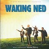 Songtexte von Shaun Davey - Waking Ned Devine