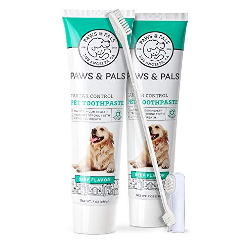 Paws & Pals Dog Toothbrush - Pet Dental Care Kit with Brush, Tooth-Paste & Dual Finger Brush - Teeth Cleaning Set Best for Doggy, Cat, Puppy, Kitten - Beef Flavor - 7oz Tube - 2 Pack