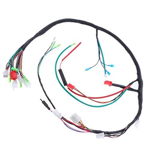FLAMEER - Conjunto de arnés de cableado para Bajaj bóxer, Partes ...