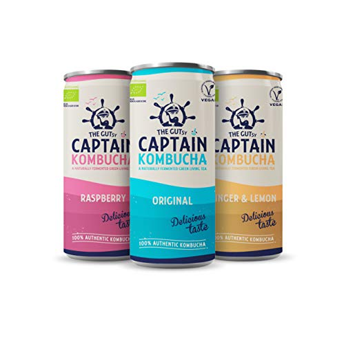 Gutsy Captain Kombucha - Raw Fermented Probiotic Kombucha, Vegan, No Preservatives, No Artificial Colours or Flavors, Non Pasteurized - 14 x 250ml Cans (MixBox)