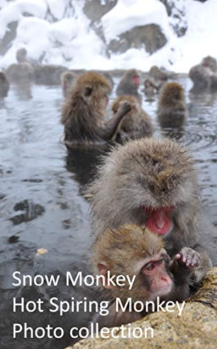 Snow Monkey,Hot Spiring Monkey Photo collection~snow Monkey Park,jigokudani-yaenkoen in Japan (English Edition)