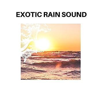 Exotic Rain Sound