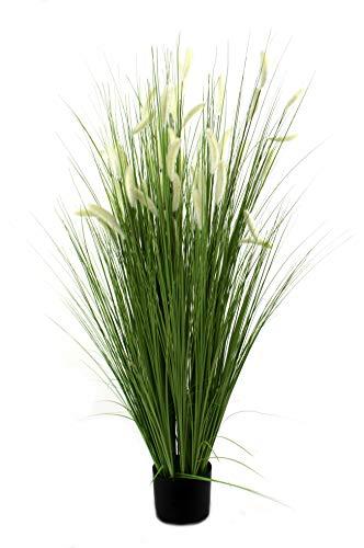 DARO DEKO Kunst-Pflanze Gras im Topf Schilfgras mit kurzen weißen Kolben 145cm