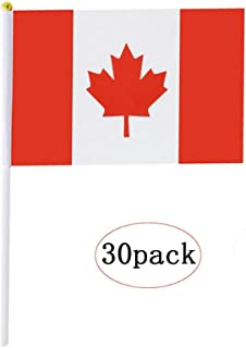 Canada Stick Flag,Canadian Hand Held Mini Small Flags On Stick International Country World Stick Flags For Party Classroom Garden Olympics Festival Clubs Parades Parties Desk Decorations(30 pack)