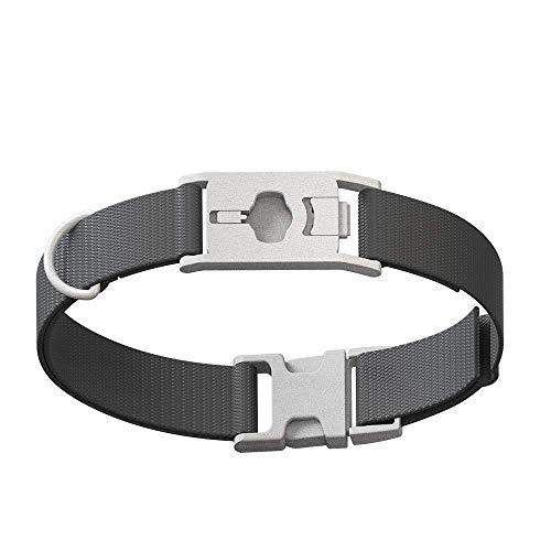 Whistle GO/GO Explore/Twist & Go Pet Collars/Squirrel Grey/Medium-Large