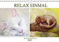 Relax einmal - Die Tierwelt macht es vor (Wandkalender 2022 DIN A4 quer): Tiere am traeumen und chillen (Monatskalender, 14 Seiten )