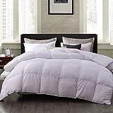 Down Alternative Comforter King Lightweight All Season Duvet Insert with 8 Corner Tabs,Hypoallergenic Comforter White Stripe 106x90Inches