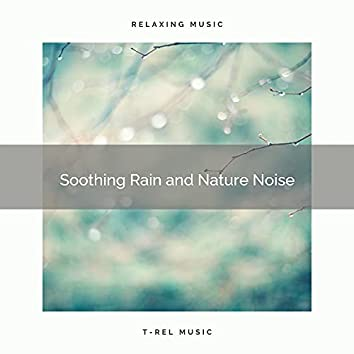 ! ! ! ! Soothing Rain and Nature Noise