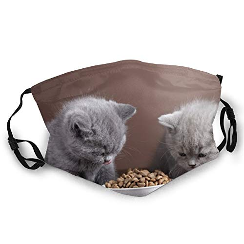 Cinlanck Fashion met dubbelzijdige patronen, wasbaar en herbruikbaar gezicht, geschikt voor iedereen, twee kittens eten kattenvoer