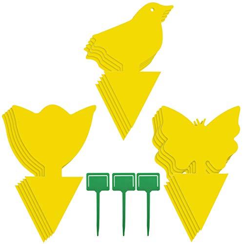 Homkeen Fliegenfalle Käferfänger, gelb, doppelseitig, klebrig, Fliegenfänger für Mücken, Pilze, Schnaken, fliegende Blattläuse, Weißfliegen, Blattminer (30 Stück)