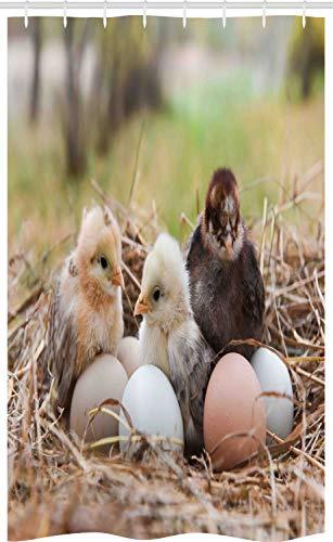 ABAKUHAUS Chicks Douchegordijn, Kleine Kippen in Hay Eieren, voor Douchecabine Stoffen Badkamer Decoratie Set met Ophangringen, 120 x 180 cm, Veelkleurig