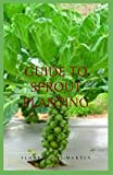 Guide to Sprout Planting: The natural process by which seeds or spores germinate and put out shoots