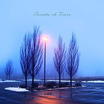Sonata of Tears