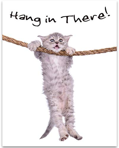 Hang In There - 11x14 Unframed Art Print - Great Inspirational and Motivational Gift for Cat Lovers and Decor for Classroom and Home Under $15