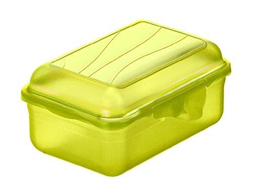 Rotho Fun Vesperdose 0,4l mit Klickverschluss, Kunststoff (PP) BPA-frei, grün, 0,4l (12,5 x 9,0 x 5,8 cm)