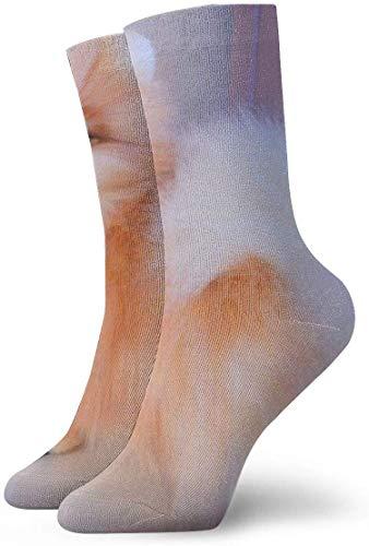harry wang Calcetines unisex Calcetines decorativos para el tobillo del perro del día de San Valentín Calcetines casuales y acogedores para hombres, mujeres, niños de 30 cm de longitud