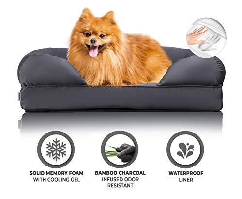 Zermätte Orthopedic Dog Bed