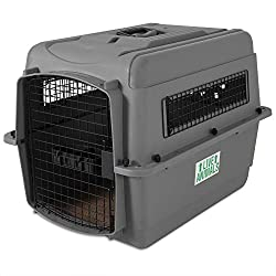 Sky Kennel Plastic dog travel crate by petmate