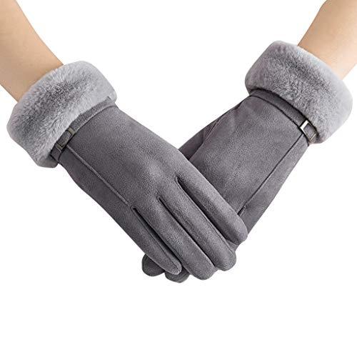 JOYKK Dameshandschoenen van wildleer, winter wram, touchscreen, skiën, winddichte handschoenen